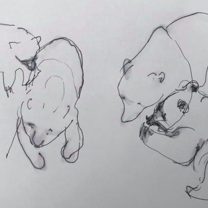 Griselda Mussett - Bears at Wildwood -