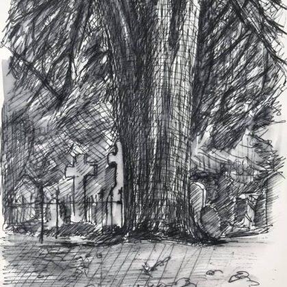 Griselda Mussett - Yew Tree, St Mary's Churchyard -